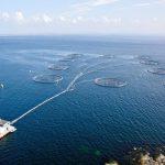 قیمت قفس پرورش ماهی در دریا