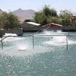 تجهیزات پرورش ماهی کپور