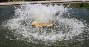 اسپلش استخر پرورش ماهی